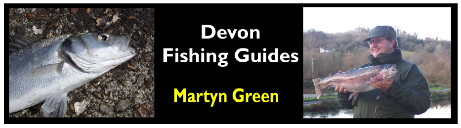 Link to Devon Fishing Guides, where you can book Martyn Green, licenced tridiscipline angling coach and coach educator, for individual 